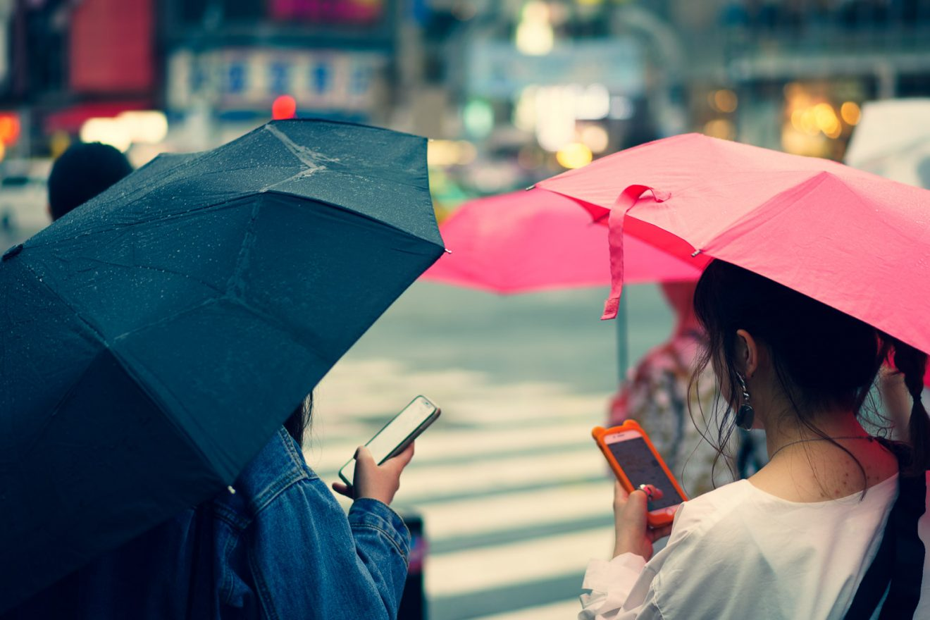 Young women with umbrellas staring at their phones